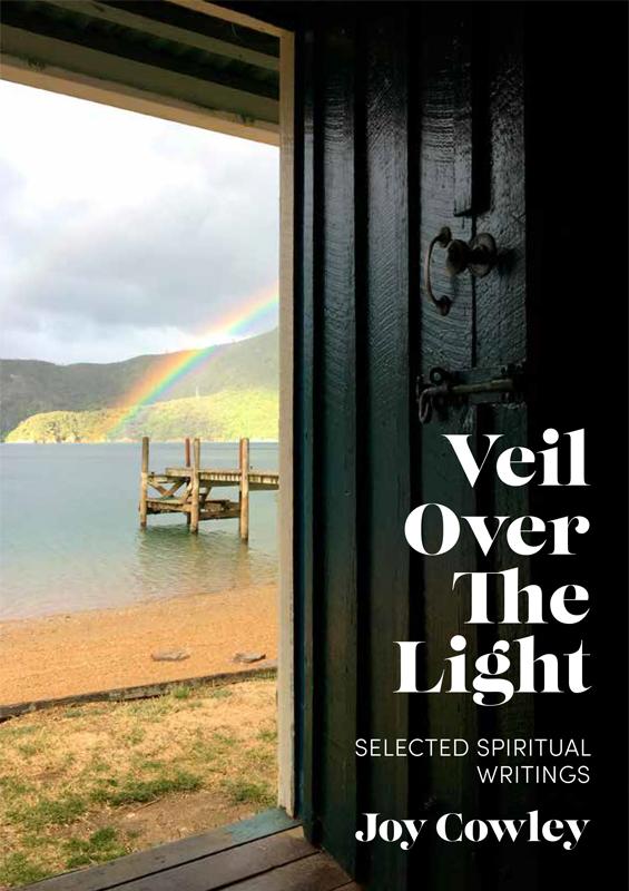 Image result for joy cowley veil over light